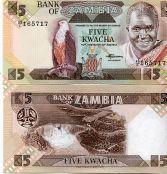 5 квач Замбия