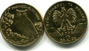 2 злотых филин (Польша, 2005 г.)